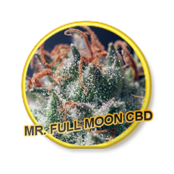 FULL MOON CBD