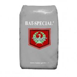 BAT- SPECIAL HNG